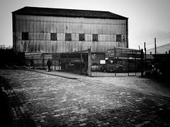Dock Road, Brentford (dominicirons) Tags: brentford westlondon redevelopment dockroad cobbles routemaster londonbus blackwhite blackandwhite