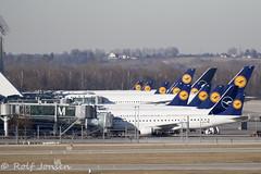 Lufthansa tails Munich airport EDDM 18.02-19 (rjonsen) Tags: plane airplane aircraft aviation airliner terminal ramp parked airbus boeing embraer