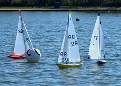 KP1480770a (Mike Millard) Tags: pooleradioyachtclub 8m poolepark