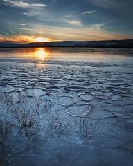 Frozen Quabbin Sunset (Tara Stoddard) Tags: sunset winter ice frozen nature quabbin reservoir water outside sky light clouds landscape outdoor lake sun massachusetts blue