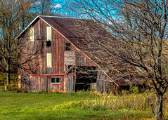 The Wagon Is In The Barn (David ZImagery) Tags: agricultural barnsandfarm biological durandarea edting hdr illinois nature places plants structures things winnebagoco grass treesleaves
