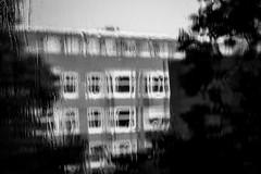 Caught in the Rain (Stefan Waldeck) Tags: window water rain drops wet summerrain windows glas tree facade sky amsterdam netherlands 2018 netzki stefanwaldeck stefan waldeck
