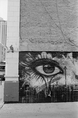 Bird and Eye (jwbeatty) Tags: analog analogphotography bw blackandwhite blackandwhitefilm building bwxx chicago cinestill eastmankodakdoublex eye film filmisnotdead graffiti illinois ishootfilm keepfilmalive mesuper pentax pentaxmesuper street streetart wall wickerpark