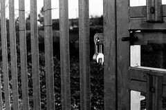 Lock (tercrossman87) Tags: canon p 50mm 14 ltm ilford hp5 400 1600 push ilfotec microphen stock home development film plustek 8200i