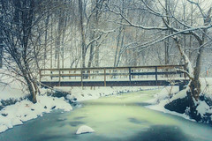 Taylor Massey Creek (A Great Capture) Tags: agreatcapture agc wwwagreatcapturecom adjm ash2276 ashleylduffus ald mobilejay jamesmitchell toronto on ontario canada canadian photographer northamerica torontoexplore winter l'hiver 2017 cold snow weather landscape paisaje paysage landschaft eos digital dslr lens canon 70d natur nature naturaleza natura naturephotography naturethroughthelens scenery scenic stream river outdoor outdoors outside shore neige schnee park parc snowy snowing taylor creek massey taylormasseycreek