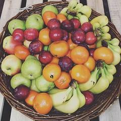 """Unser Obstkorb BASIC mit dem Apfel """"Nicoter"""", der Birne """"Williams"""", Premium Bananen und zwei Saisonfrüchten wie aktuell Clementine """"Clemenvilla"""" aus Spanien und Pflaume """"Purple Majesty"""" aus Südafrika. . Mit dem Code """"insta15"""" erhältst Du 15% Rabatt auf De (MyFreshFarmDE) Tags: instagram anappleaday healthylifestyle healthy gesund gesundessen regional lieferservice büro obstkorb fitfood foodblogger freshstart vitamine instafood hamburg obst gemüse veggie obstliebe ernährung gesundleben nurdasbeste fitness qualität photooftheday fresh fruitsnack dailymotivation gesundundlecker frischegarantie"""