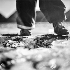 Step up to get your rep up (chipsmitmayo) Tags: mamiya c330 sekor 80mm f28 rollei rpx 25 film analog schwarzweiss blackandwhite rollfilm 120 square quadrat mittelformat bockholter berge münsterland nsg winter spaziergang