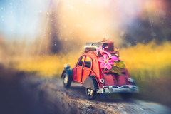 The way to spring (Ro Cafe) Tags: car citroen creativeaperture lensbaby outdoors singleglassoptic sonya7iii toy garden macrolenskit miniature setup sunnyday selectivefocus blur flowers bokeh stilllife