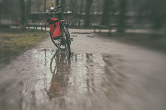 2019 Bike 180: Day 25, February 22 (suzanne~) Tags: 2019bike180 bike bicycle puddle rain path munich bavaria germany winter tree lensbaby sol45