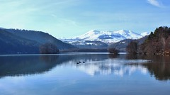 Les 3 canards (raym5) Tags: lac lacchambon auvergne