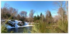 Petit coin (au35) Tags: massifcentral labourboule etang eau neige bois arbres snow nikon d5000