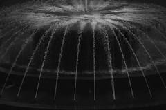 Dark Fountain (FButzi) Tags: genova genoa liguria italy italia piazza de ferrari fontana fountain bw