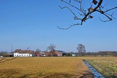 2019 België 0027 Achel (porochelt) Tags: achel belgië b limburg belgium belgien belgique bélgica