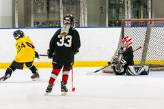 DSC_4309.jpg (Flickr 4 Paul) Tags: chillerdublin hornets pondhockey