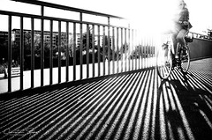 that's.how.the.light.gets.in (grizzleur) Tags: light sun sunlight glare blinding extreme shadow shadows lines perspective diagonal bike bicycle cyclist bridge timing highcontrast street streetphotography moment candid ricoh
