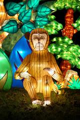 Monkey (Seeing Visions) Tags: 2018 unitedstates us losangelescounty la arcadia laarboretum moonlightforest chineselanternfestival night dark colorful cloth light jungle grass monkey mammal sitting seated raymondfujioka