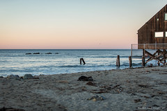 Exploring Life (kengikat40) Tags: beach water ocean explore exploring golden sunrise nature naturephotography photographer mornings mylifethroughmylens pacificcoast west coastlalos angeles malibu
