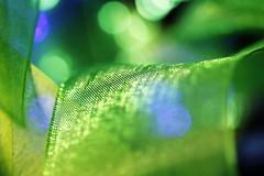 Green Mesh for Redux18 (Christian Chene Tahiti) Tags: canon 6d auckland nouvellezélande mesh redux18 macromondays colour couleur macro ruban maille carré rouge red jaune yellow texture motifgéométrique vert bleu green bokeh