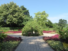 Wheaton, IL, Cantigny Park, Garden Scene (Mary Warren 12.0+ Million Views) Tags: wheatonil cantignypark nature flora plants green leaves foliage park garden red blooms blossoms flowers trees sky