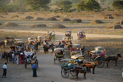 Collected carriages near Nyaunglaphet Sunset Hill (huzu1959) Tags: myanmar bagan a7ii alpha7ii sonya7ii alphaa7ii sonyalpha7ii sonyalphaa7ii sony