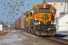 BNSF 6973 Reynolds 6 Dec 08 (AK Ween) Tags: bnsf bnsf6973 emd sd402 reynolds northdakota hillsborosub hgfdntw train railroad grandforks northtown birds