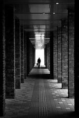 (cherco) Tags: alone lonely japan nagano tunel tunnel gallery blackandwhite city man rain umbrella vanishingpoint canoneos5diii travel architecture