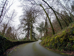 Long and winding road (Howie Mudge LRPS BPE1*) Tags: trees sky road wall landscape nature ngc gwynedd wales cymru uk winter 2019 panasonicg9 m43 microfourthirds fisheye travel adventure panasonicdcg9 7artisans 75mm 7artisans75mmf28fisheye