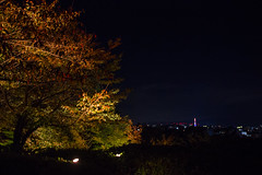 Vue sur Kyoto (stephanexposeinjapan) Tags: kyoto japon japan asia stephanexpose asie canon 600d 1635mm arbre tree nuit night city ville