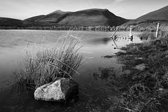 Rock in the tarn (jeff.dugmore) Tags: england uk britain europe lakedistrict tewettarn threlkeld nationalpark lakedistrictnationalpark water tarn mountains mountainside hillside hillwalking fellwalking nature colours fence grass grassland farmland sky blue landscape rural scenic countryside tranqil serene moody outside outdoors brown picturesque reflection canon nisi winter monochrome blackandwhite