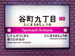 Tanimachi 9-chone Station (Hideki-I) Tags: iphone subway osaka japan station osakametro word number