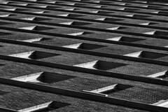 (jfre81) Tags: downtown houston texas tx black white lines blocks squares geometric grey abstract minimalist
