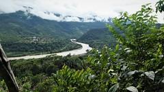 Santa Fee - Coroico rio (kirstenmatthiesen) Tags: broncini caranavi bolivia butterfly mariposa santa fee