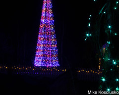 915A6316 (mikekos333) Tags: 2018 december christmas christmaslights coastalmainebotanicalgardens boothbay