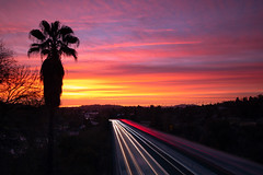 off into the sunset (Andy Kennelly) Tags: sunset los angeles california colorful palm tree clouds freeway road lights trails yellow blue pink pasadena offintothesunset