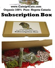 Catnip4cats.com Catnip monthly subscription box of cat treats, cat toys, and other products for your cat or kitten #catnip #cats #follow #catsoftwitteroninstagram #catsofinstagram #CatsOfTwitter #cat #cathigh #catmint #nepetiacataria #cattoys #cattreats # (RetrosheepCharms) Tags: catnip4catscom catnip monthly subscription box cat treats toys other products for your or kitten cats follow catsoftwitteroninstagram catsofinstagram catsoftwitter cathigh catmint nepetiacataria cattoys cattreats