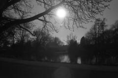 Wintersun Broersepark (Arne Kuilman) Tags: amsterdam nikon fm3a 28mm luckyshd iso100 id11 7minutes homedeveloped stock analogue film
