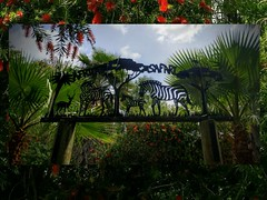 Gorgeous Beauty of Weather and Nature! (jlynfriend) Tags: phonephoto lg sky clouds park animals art structure wood iron metal flowers trees plants nature weather day