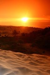 240_F_33087588_CkEfCAxvqma5U0qA7xb5oFDpcefoBJaD (lhoussain) Tags: camel another life sunrise sunset calm relax berber women