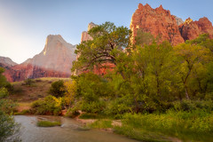 Sunlight at Court of the Patriarchs (optimalfocusphotography) Tags: godrays autumn utah landscape desert river nature nationalpark trees crepuscularrays zionnationalpark fall water usa