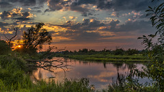 Days of late summer 3 (piotrekfil) Tags: nature landscape sunset sun clouds water river sky reflections riverside tree pentax poland piotrfil