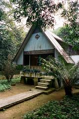 (edmondburnett) Tags: kodak portra film 400 leica m7 35mm vietnam cuc phuong national forest cabin indiefilmlab