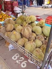 Durio zibethinus Murray Bombaceae-Durian, ทุเรียน (SierraSunrise) Tags: bombaceae durian durio esarn fruit isaan market nongkhai phonphisai thailand vendor