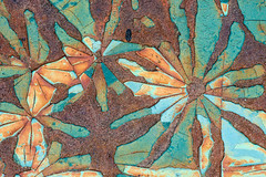 1805_3873 Rust Flowers (wild prairie man) Tags: abstract abstraction macro closeup rust paint oldcar 1939pontiac rustflowers imagination fantasy art change weathered breakingdown decomposing oxidization fallingapart metal rusting cracking cracked beautiful wow amazing iamspeechless abandoned relic derelict nearvalmarie sk saskatchewan canada copyrighted jamesrpage explored