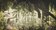 No one will take my dragons (Stefania Giano) Tags: lepoppycock lelutka glamaffair moonhair oa opiumsaddiction