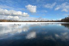 Olchinger See  3 (Pixelkids) Tags: olching olchingersee bayern winter winterbild eis see himmel wasser wolke landschaft landschaftsfotografie enten spiegelung