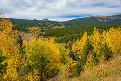 Fall colors (Snap Man) Tags: bouldercounty colorado colorado72 frontrange peaktopeakhighway rockymountains aspens byklk fallcolors unitedstates peaktopeak highway