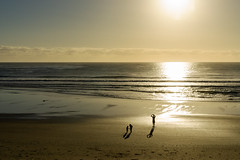 B O X I N G   D A Y (scatrd) Tags: 2018 landscape sonya6000 australia midnorthcoast sony lowtide nsw morning landscapephotography beach safetybeach 1670mmf4ossziess newsouthwales jasonbruth e1670mmf4ossziess a6000 beachphotography country au