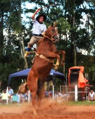 Juan Surt e Ventena (Eduardo Amorim) Tags: gaúcho gaúchos gaucho gauchos cavalos caballos horses chevaux cavalli pferde caballo horse cheval cavallo pferd pampa campanha fronteira quaraí riograndedosul brésil brasil sudamérica südamerika suramérica américadosul southamerica amériquedusud americameridionale américadelsur americadelsud cavalo 馬 حصان 马 лошадь ঘোড়া 말 סוס ม้า häst hest hevonen άλογο brazil eduardoamorim gineteada jineteada