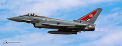 RAF Typhoon (Thomas Wraight) Tags: photography canon canon7dii raffairford riat airshow riat2018 raf100 100years rafcentenary eurofightertyphoon eurofighter typhoon rollsroyce fighter groundattack multirolecombataircraft mrca bomber bae baesystems qra quickreactionalert display roledemo raf royalairforce rafconingsby 29squadron aviation aircraft flight warbirds military militaryaircraft combataircraft combat jet fastjet supersonic