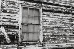 IMG_8221logo (Annie Chartrand) Tags: farmhouse house abandoned ruraldecay illinois calhouncounty antique window monochrome bw blackandwhite